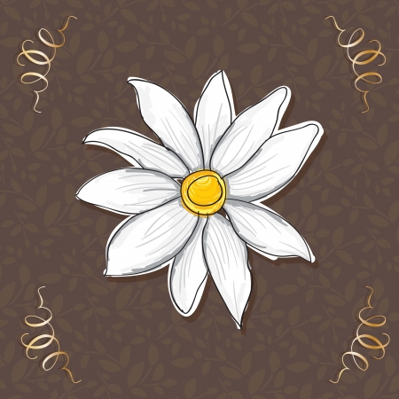 naturism: Beautiful White Flower, On brown Background. Vector