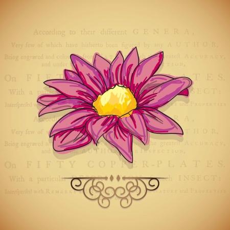 naturism: Flowers Icons (Colorful Illustration) on vintage background