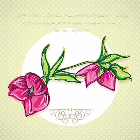naturism: Fuchsia Flower Icon (for decoration) On vintage background. Vector Illustration