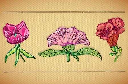 naturism: Colorful Flowers Icons Set on vintage background. Vector Illustrtion