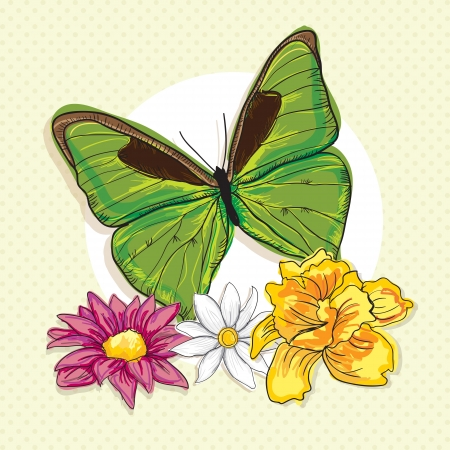 Big Green Butterfly, with colorful flowers, on vintage background. Vector