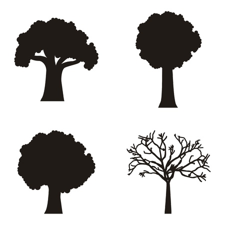 siluettes: siluettes trees over white background. vector illustration