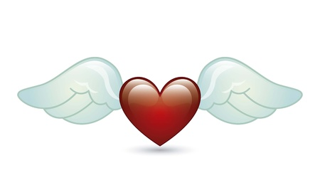 heart and wings: angel wings over white background. vector illustration Illustration