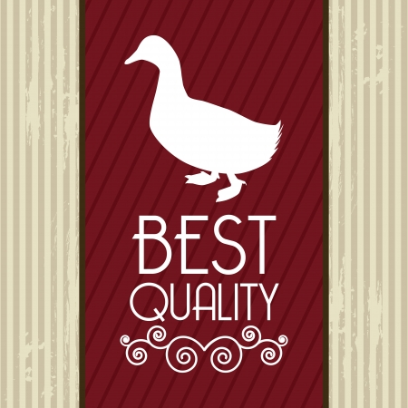 plumed: duck meat over beige background. vector illustration