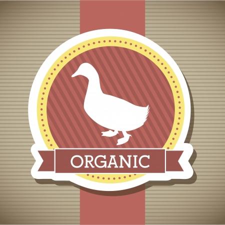 duck meat over beige background. vector illustration