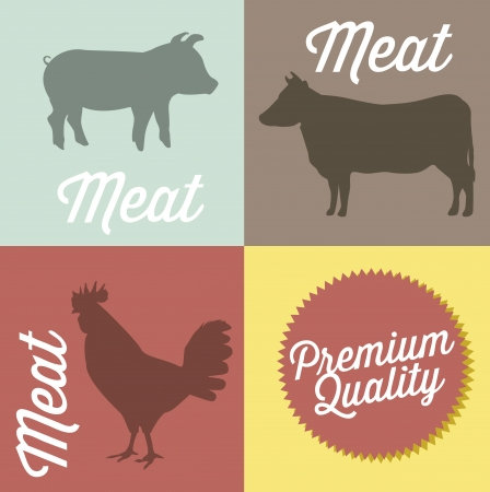 duck meat: farm animals over squares background. vector illustration