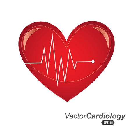cardiology design over white background vector illustration  Vector