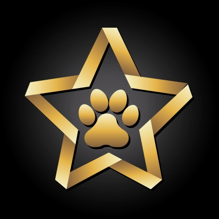cartoon star: dog footprint over black background vector illustration