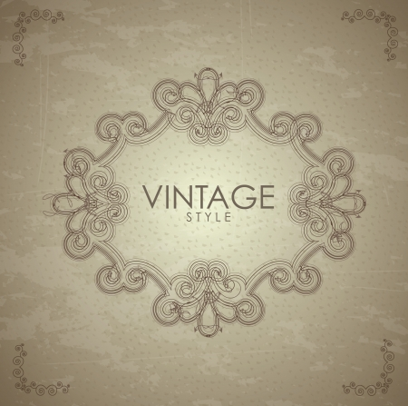 old skin over vintage background vector illustration Vector