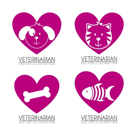 veterinarian icons over white background vector illustration  Vector