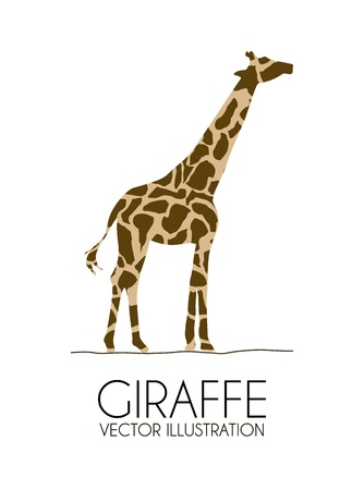 giraffe design over white background vector illustration  Vector