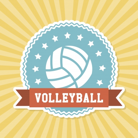 volleyball design over grunge background vector illustration Stock Vector - 20499418