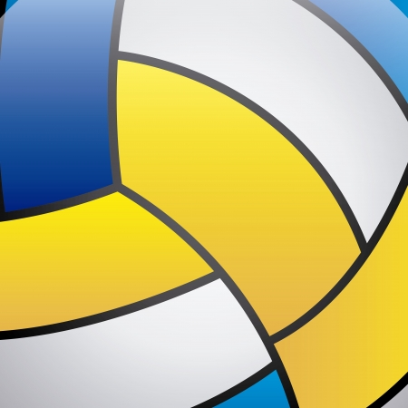 volleyball skin over ball  background vector illustration  Vector