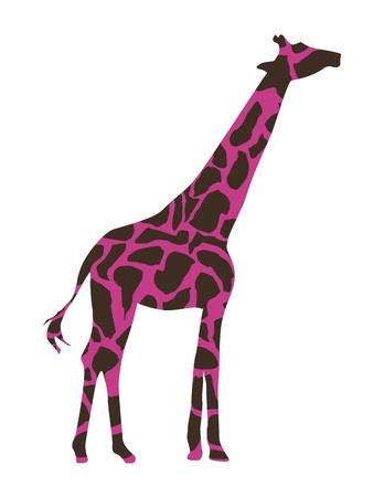 Giraffe-Design über weißem Hintergrund Vektor-Illustration Standard-Bild - 20499305