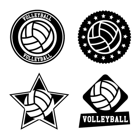 volleyball  seals over white background vector illustration  Ilustracja
