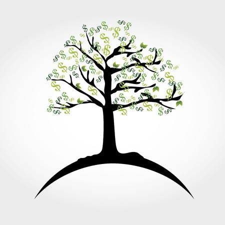 money tree: money tree over white background