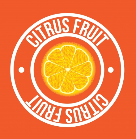 citrus fruit seal over orange background vector illustration Illustration
