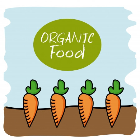 organic food over white background vector illustration  Vector