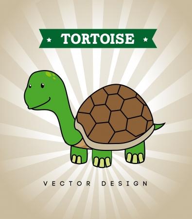 tortoise design over gray background vector illustration  Vector