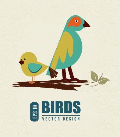 birds design over white background vector illustration  Vector