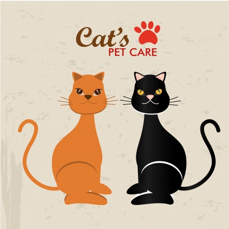 pet care design over beige background vector illustration  Vector