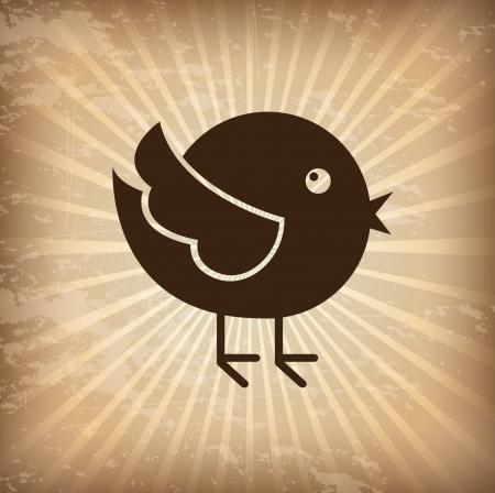 bird design over grunge background vector illustration   illustration