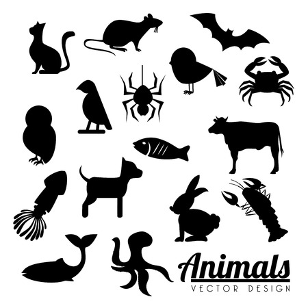 animals  design  over white background vector illustration  Vector