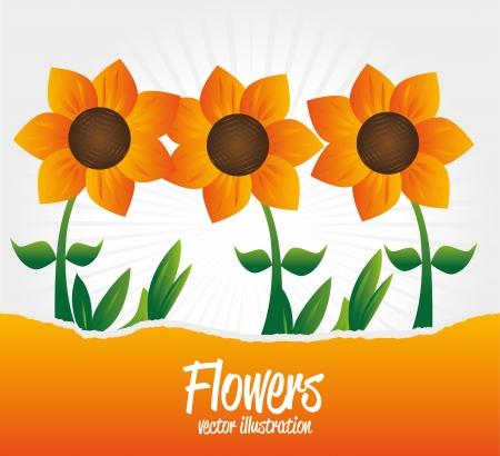 flowers garden over gray background vector illustration  Vector