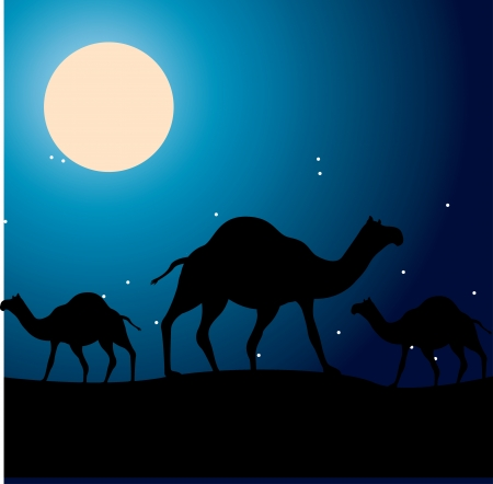 myrrh: camels design over night sky background  vector illustration Illustration