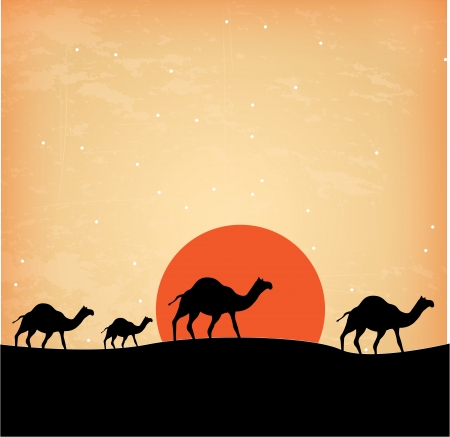 frankincense: camels design over sunset background  vector illustration