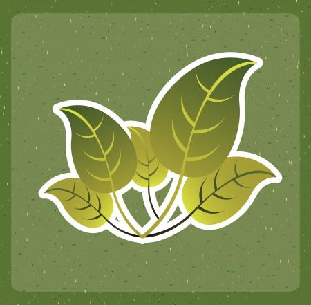 eco design over green background vector illustration Ilustração