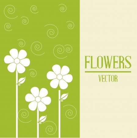 obituary: flowers design over green  background vector illustration   Illustration