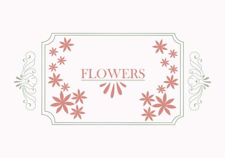 flowers design over white background vector illustration Vetores