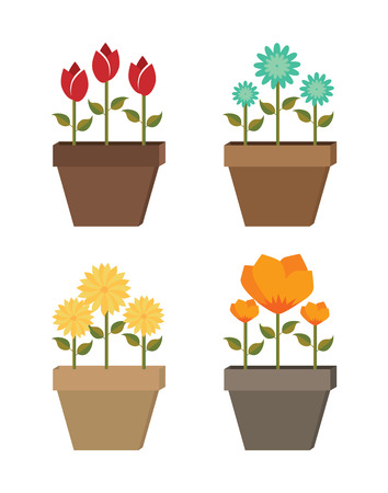 flowers design over white  background vector illustration   Vector