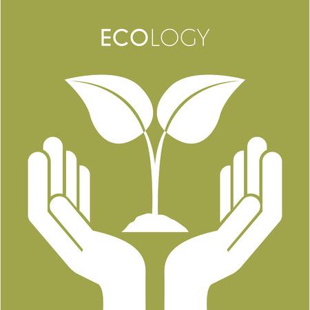 Dos manos con hojas sobre fondo verde, ilustración vectorial