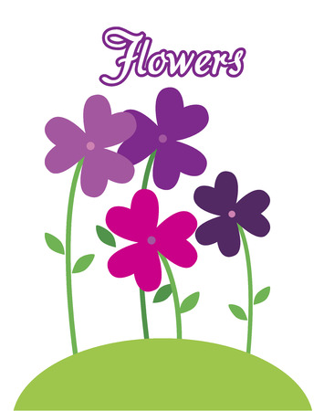 flowers purple design over white background vector illustration  Vector