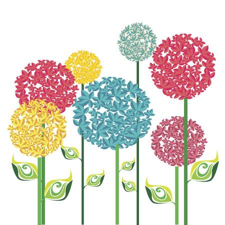 flowers design over white background vector illustration   Illustration
