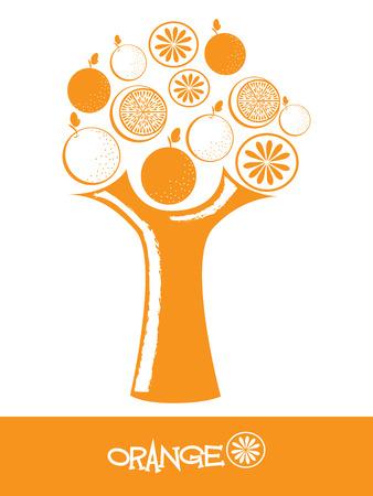 orange tree: fruits orange tree design over white background vector illustration Illustration