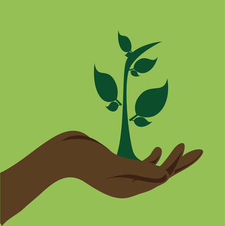 eco design over green background, vector illustration Vector