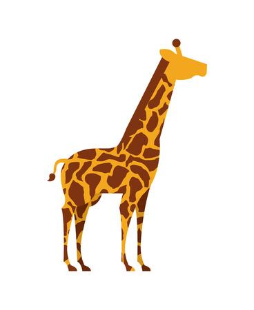 Africa giraffe  design over white background Vector