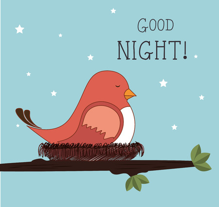 night bird: Good night design over blue background, vector illustration