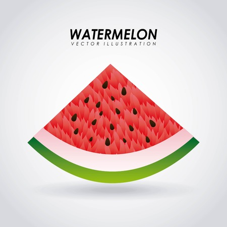Watermelon over white background vector illustration Vector