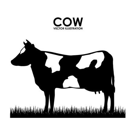 cow design over white background vector illustration