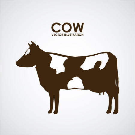 animal picture: cow design over white background vector illustration