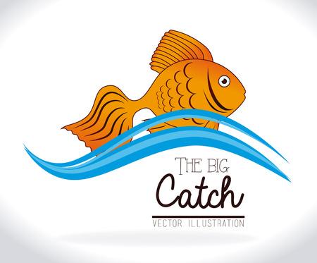 Conception de pêche sur fond blanc, illustration vectorielle Banque d'images - 30848639