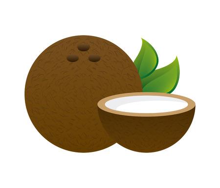 coconut fruit design over white background illustration Illustration