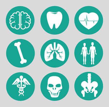 Medical design over gray background, vector illustration Vector