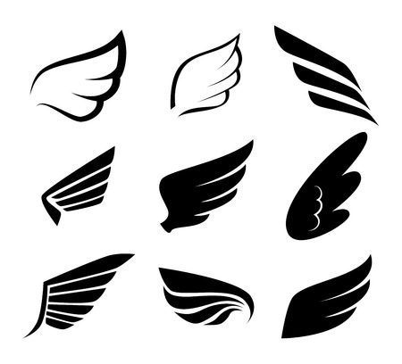 wings design: Wings design over white background illustration