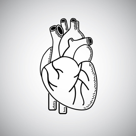 Heart shape on white background, Vector illustration Vector