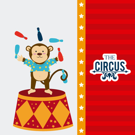 cirque: Circus design over colorful background, vector illustration